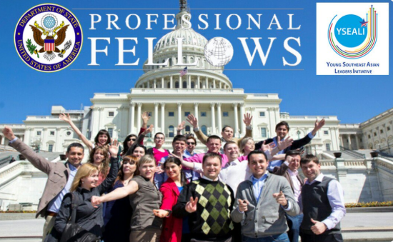 professional fellows